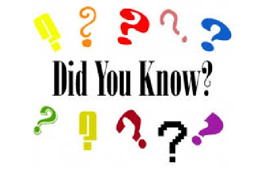 Did you know you can……