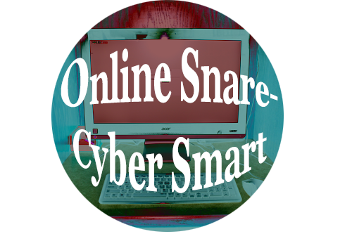 Online Snare-Cyber Smart Project