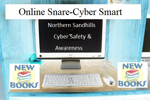 New Books at VPL about Cyber Security and Online Safety